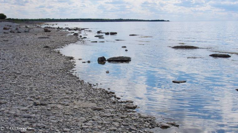 Norra Ölands västkust