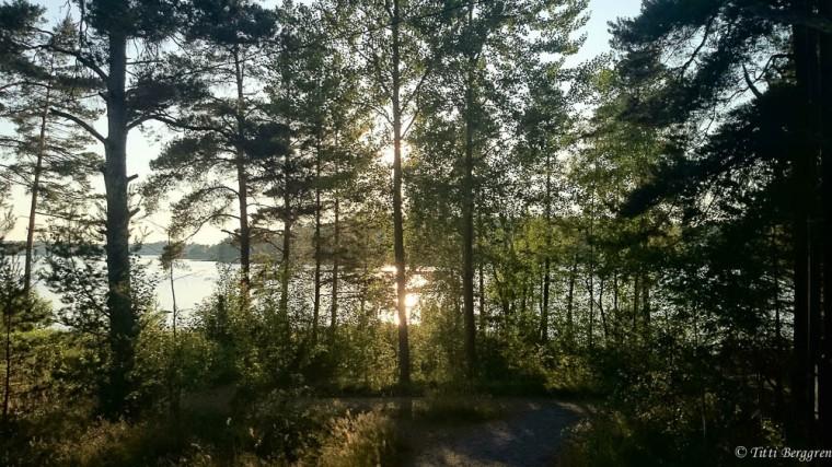 Sommarkväll Aspö